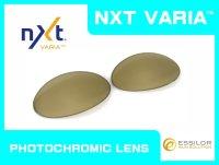 ROMEO1 - Gold Varia - NXT® VARIA™ Photochromic
