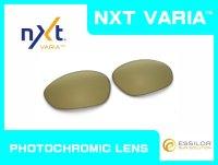 X-METAL XX - Gold VARIA - NXT Photochromic