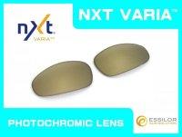 JULIET - Gold Varia - NXT® VARIA™ Photochromic