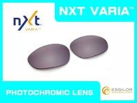 X-METAL XX - Flash Copper - NXT Photochromic