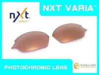 ROMEO2 - Pinky Gold - NXT Photochromic