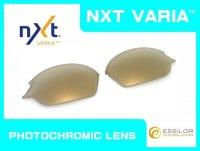 ROMEO2 - Gold VARIA - NXT Photochromic