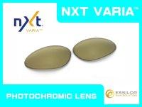 PENNY - Gold Varia - NXT® VARIA™ Photochromic