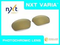 HALF-X  - Gold Varia - NXT® VARIA™  Photochromic