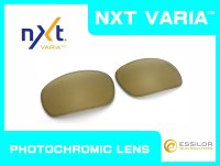 BADMAN - Gold Varia - NXT® VARIA™ Photochromic